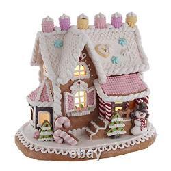 Kurt S. Adler 9-Inch LED Lights Gingerbread House, Multi